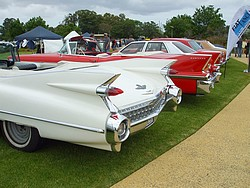 Cadillacs lined up for Maurice Brockwell Run 2011