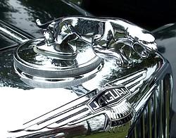 jaguar show & concours 2011