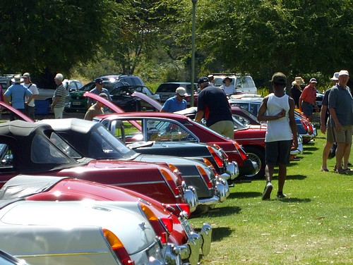 MGB's on show