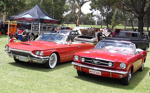 Ford Mustang and Thunderbird